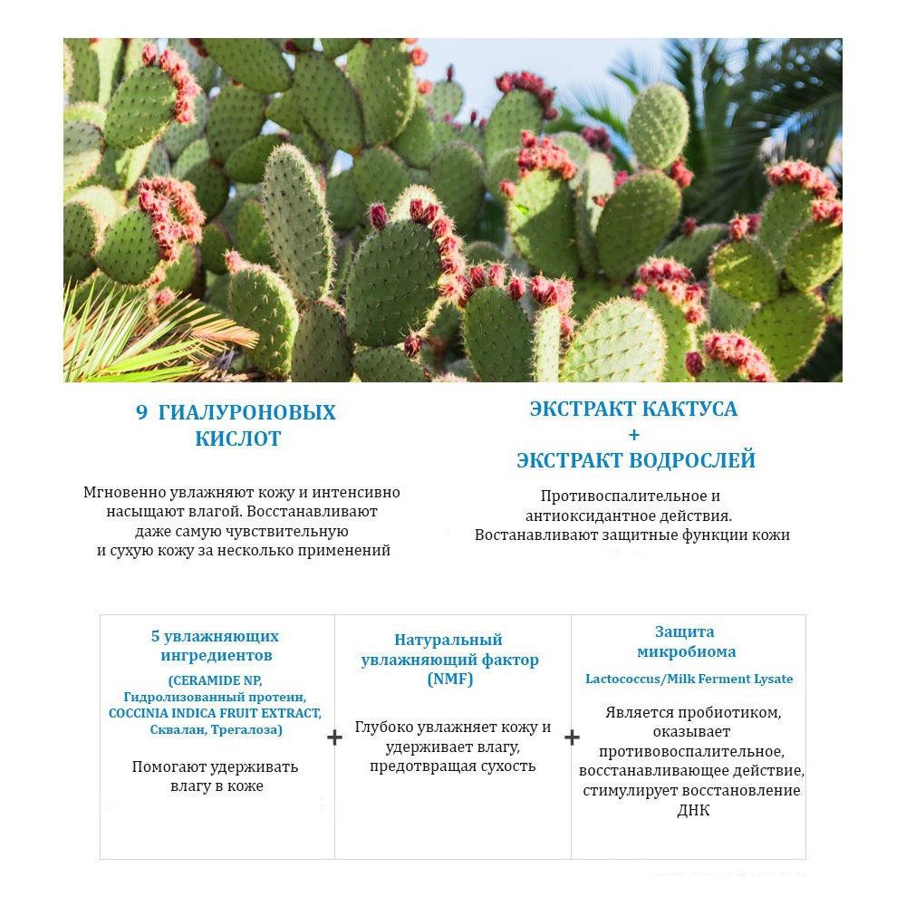 JMsolution Hyal Cactus + Resurrection Plant + Seaweed Mask & Cleansing Foam Special Set 100 ml + 11 x 30 g